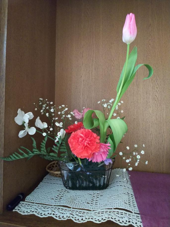 確定申告代行事務所の今週の花(1月28日)